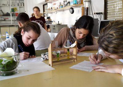 bachillerato_plan_de estudios2