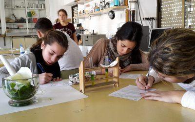 Becas del Ministerio de Educación para estudiar Bachillerato, Ciclos Formativos y FPB