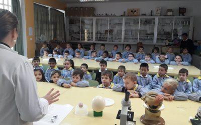 Educación Infantil 5 años visita el Laboratorio de Física y Química de nuestro colegio.