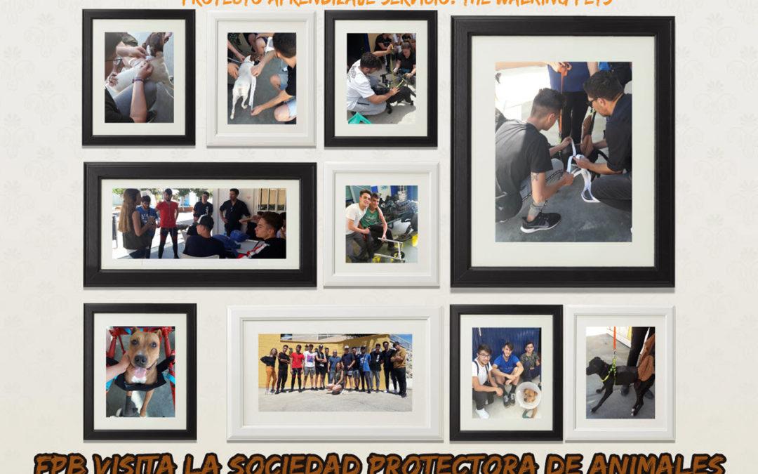 1º y 2º FPBV visitan a la Protectora de Animales y Plantas Málaga