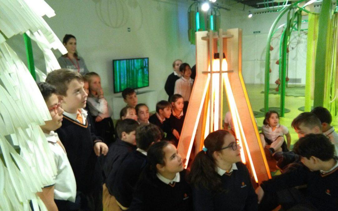 Educación Primaria visita el museo Pompidou de Málaga