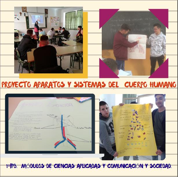 Proyecto en FPB sobre aparatos y sistemas del cuerpo humano